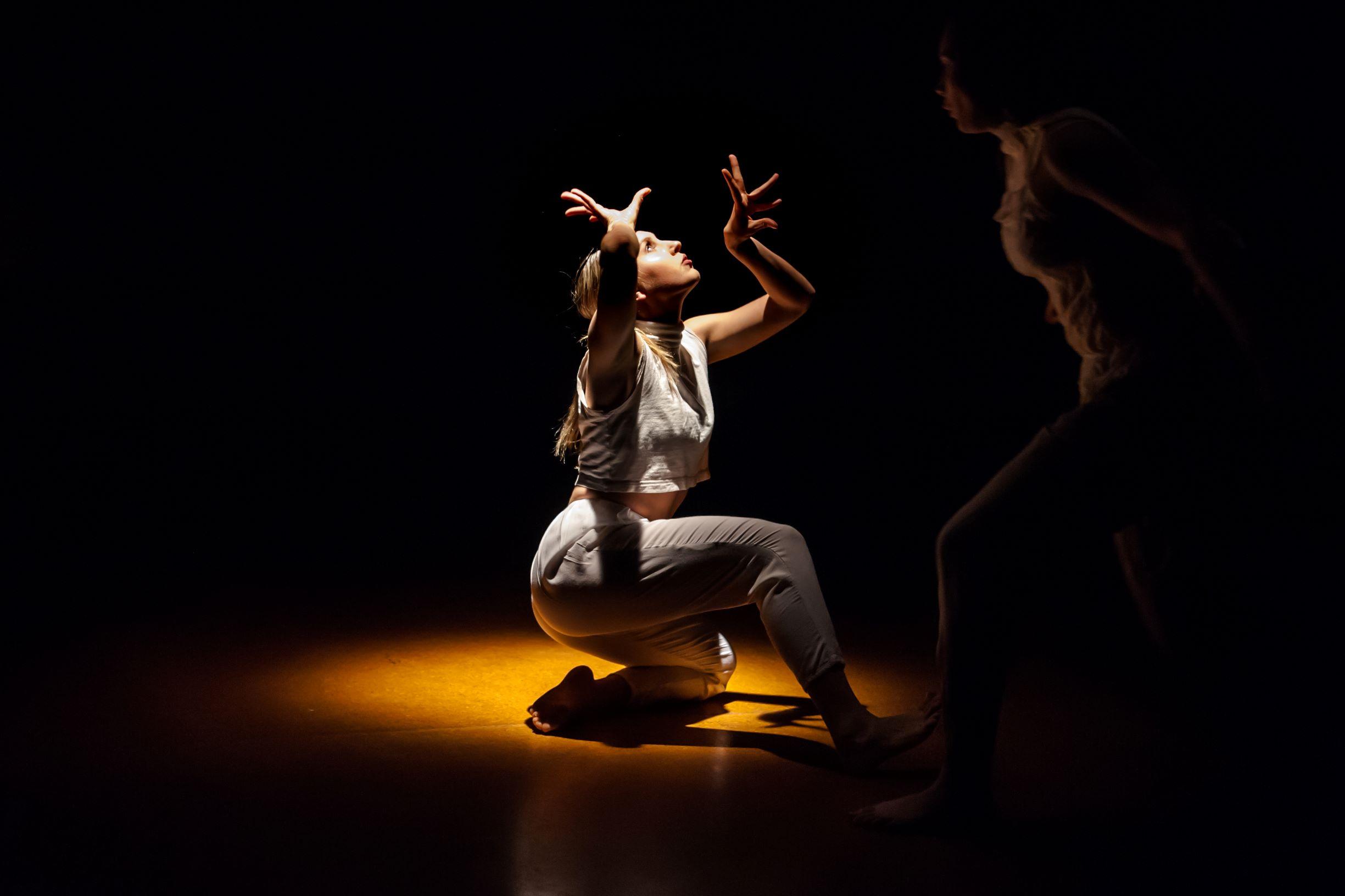 NZSD Choreographic Season | STOA 2018